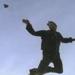 fly peregrine falcon